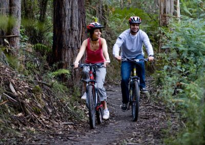 Mountain Biking in The Otways