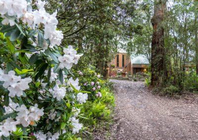 qii-house-in-bloom